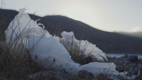Plast- förorenad kust arkivfilmer