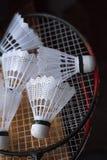 Plast- fjäderbollar på badmintonracket Arkivbilder