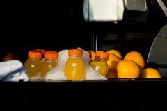 Plast- flaskor av orange fruktsaft med frukt i is royaltyfri bild