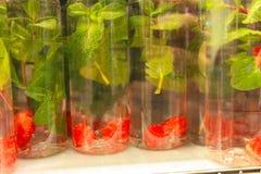 Plast- flaskor på en hylla VATTEN med hallon och mintkaramellen royaltyfri fotografi