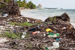 Plast-flaskor tvättade sig på den karibiska stranden Royaltyfria Foton