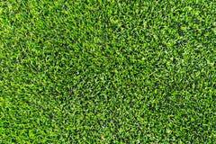 Plast- gräs med det rubber golvet för inomhus sport Arkivfoto