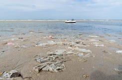 Plast- Rubbish som tvättas upp på en strand royaltyfria bilder