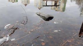 Plast- skräp på sjön stock video