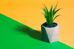 Plast- växt i blomkruka royaltyfri fotografi