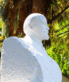 Plaster bust of Lenin on a background of green summer sunny weather Stock Images