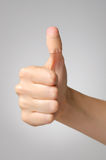 Plaster on female thumb. Female thumb with adhesive bandage Royalty Free Stock Image