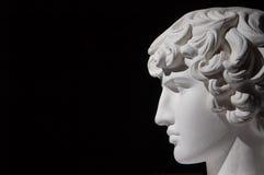 Plaster head Stock Image