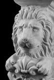 Plaster lion sculpture, pommel column. On a black background royalty free stock photos