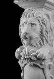 Plaster lion sculpture, pommel column. On a black background royalty free stock images