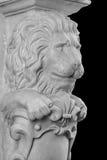 Plaster lion sculpture, pommel column. On a black background stock photo