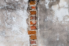 Plaster and red brick wall damage. Stock Image