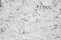 The plaster on the wall. Royalty Free Stock Photos