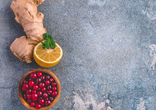 Plastered Background With Ginger And Cranberries Royalty Free Stock Images