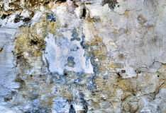 Plastered wall. Abstract detail from a plastered wall, in which you can discover several figures. This phenomena is calles apophenia stock photography