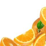 Plasterek świeża pomarańczowa rama zdjęcie royalty free