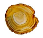 Plasterek agata kryształ na białym tle Obraz Royalty Free