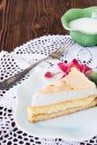 Plasterek cheesecake obraz stock