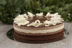 Plasterek domowej roboty czekoladowy tort obraz royalty free