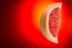 Plasterek grapefruitowy w wodzie zakrywającej z bąblami na gradiencie fi Obrazy Royalty Free