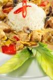 plasterek kurczaka rozsypiska ryż plasterek Zdjęcie Stock