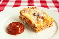 Plasterek lasagne Obraz Stock