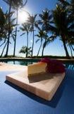 Plasterek lilikoi cheesecake na pięknym Hawajskim dniu Obraz Royalty Free