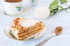 Plasterek tort. Płytka głębia pole Obraz Royalty Free