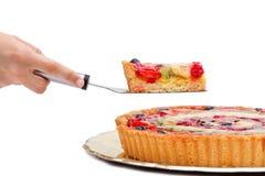Plasterek owoc tort Zdjęcia Stock