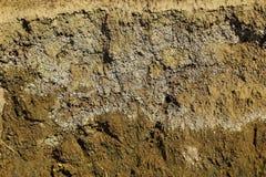 Plasterek tekstury piaskowata ziemia Zdjęcie Royalty Free