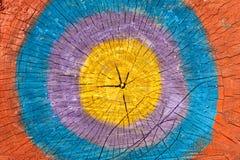 Plasterków fiszorki malujący kolory Obraz Stock