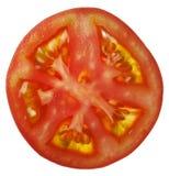 Plasterka pomidor Obraz Royalty Free