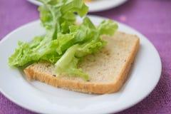 Plasterki cała zbożowa chleba i zieleń dębu sałata Zdjęcie Royalty Free