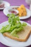 Plasterki cała zbożowa chleba i zieleń dębu sałata Obraz Stock