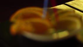 Plasterki cytryna i pomarańcze zbiory wideo