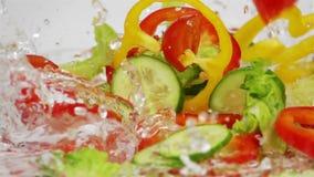 Plasterki Dojrzali warzywa Spadają na stole zdjęcie wideo