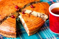 Plasterki gąbka torta zebra i filiżanka herbata Obraz Royalty Free