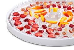 Plasterki jagody i owoc na dehydrator tacy Obraz Stock