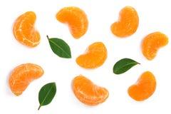 Plasterki mandarynka lub tangerine z liśćmi odizolowywającymi na białym tle Mieszkanie nieatutowy, odgórny widok Owocowy skład obraz royalty free