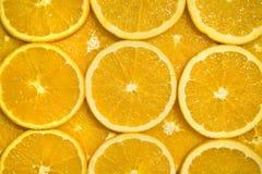 plasterki pomarańczowe Zdjęcie Royalty Free
