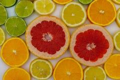 Plasterki różnorodne cytrus owoc zdjęcia stock