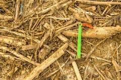 Plastic afval op een strand royalty-vrije stock foto's