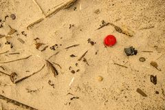 Plastic afval op een strand, rood deksel royalty-vrije stock foto's