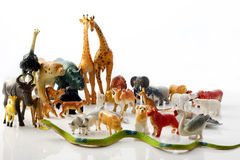 Plastic animals  toys Stock Image