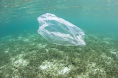 Plastic Bag Drifting in Pacific Ocean. A plastic bag drifts over a seagrass meadow in Indonesia. Plastics have become a major environmental problem in all oceans royalty free stock photo