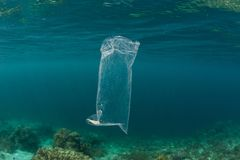 Plastic Bag Drifting in Tropical Pacific Ocean. A discarded plastic bag drifts through the sea in Indonesia. Non-recyclable plastics eventually break down into stock photography