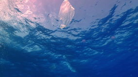 Plastic bag floating in ocean stock video footage
