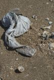 Plastic bag found left trashed on the beach surrounded with sea shells. A starting point of the environment problem stock photo