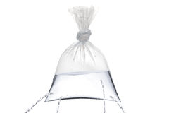 Plastic bag with holes royalty free stock photos