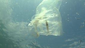 Free Plastic Bag In The Sea, Killing Shrimp. Plastic Trash, Pollution Stock Photo - 157298230